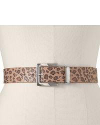 Cintura leopardata marrone chiaro