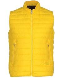 Gilet giallo